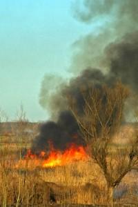 La Valle brucia a rivalta (foto Bertolini)