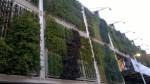 I giardini parete di un padiglione dell'Expo
